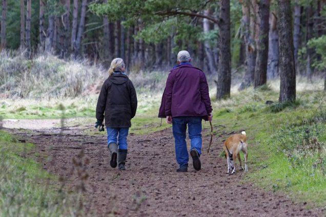 Gezondheid wandelen